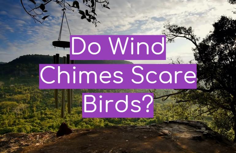 Do Wind Chimes Scare Birds?